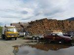 In Merritt. Seems like logging is big there...