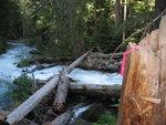 Bridge Log
