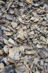 "Interesting rocks, I call them ""tiger rocks"""