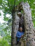 Maya in a tree