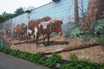 We stopped for ice cream in Chemainus on Vancouver Island where there are many murals