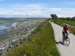 Cycling along Boundary Bay