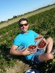 Strawberry Picking at Westham Island Herb Farm