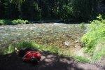 Maya taking a nap on the shore of the St. Joe River