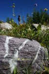 Striped Rock (with Clemens)