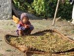 Child Nepal.jpg