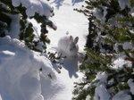 Snowspider_69.jpg