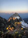 East Ridge of Serratus, Alpha, Garibaldi, Mamquam -> check