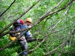 Bushwacking the slide alder paths