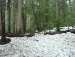 Harrison Hut Route May 13, 2013 003.JPG