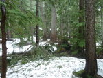 Harrison Hut Route May 13, 2013 004.JPG