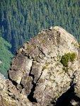 Fishhook on a rock