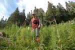Matt hiking down the cutblock