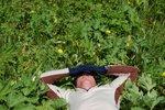 Meadows nap