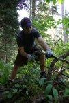 Dan sawing
