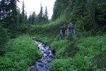 Conrad and Dan hiking through meadows