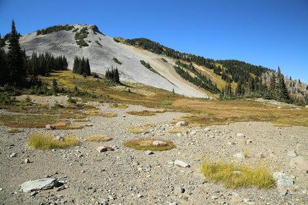 2014-09-14 Garibaldi & Panorama Ridge 2014 8617