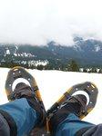 Yep, Snowshoes