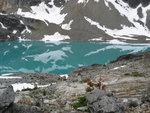 Wedgemont Lake 016