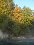 Cowichan River, near Jan and Warrick's House