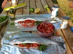There is a huge Sockeye run this year, and the fish were dead cheap