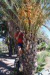 There were many dates in San Ignacio