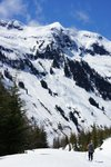 We saw a great big avalanche just as we left the trees