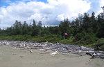 Driftwood and war memorial at Wickaninnish Beach, Pacific Rim National Park. Photo: Michael Maharik