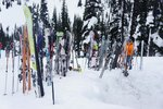 Lots and lots of skis