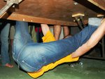 Pete under the table.jpg