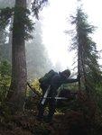 Roe Creek Trail clearing