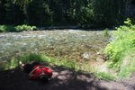 Maya taking a nap on the shore of the St. Joe River