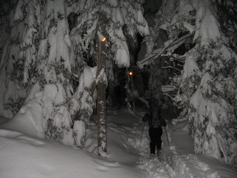Night Travel, Brew Trail December 2006. Photo: Roland Burton