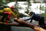 Veenstra and Champagne slide the log across the creek