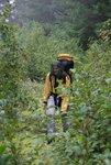Sandra hiking the overgrown road