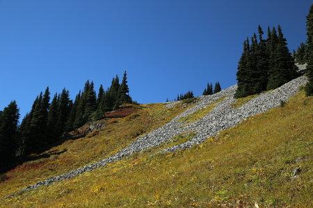 2014-09-14 Garibaldi & Panorama Ridge 2014 8594