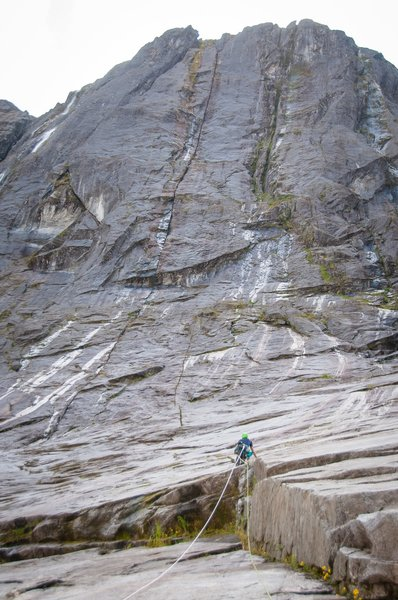 Duncan leading the first pitch of 'Lizard King'