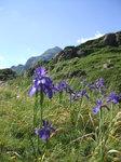 Hike_Work 062