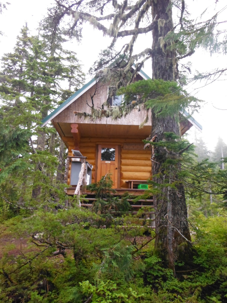 Mt. Troubridge Hut