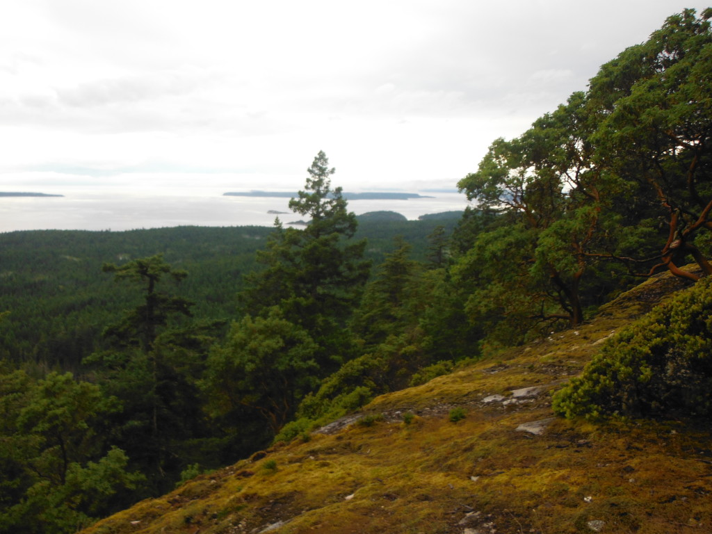 View from Manzanita Hut