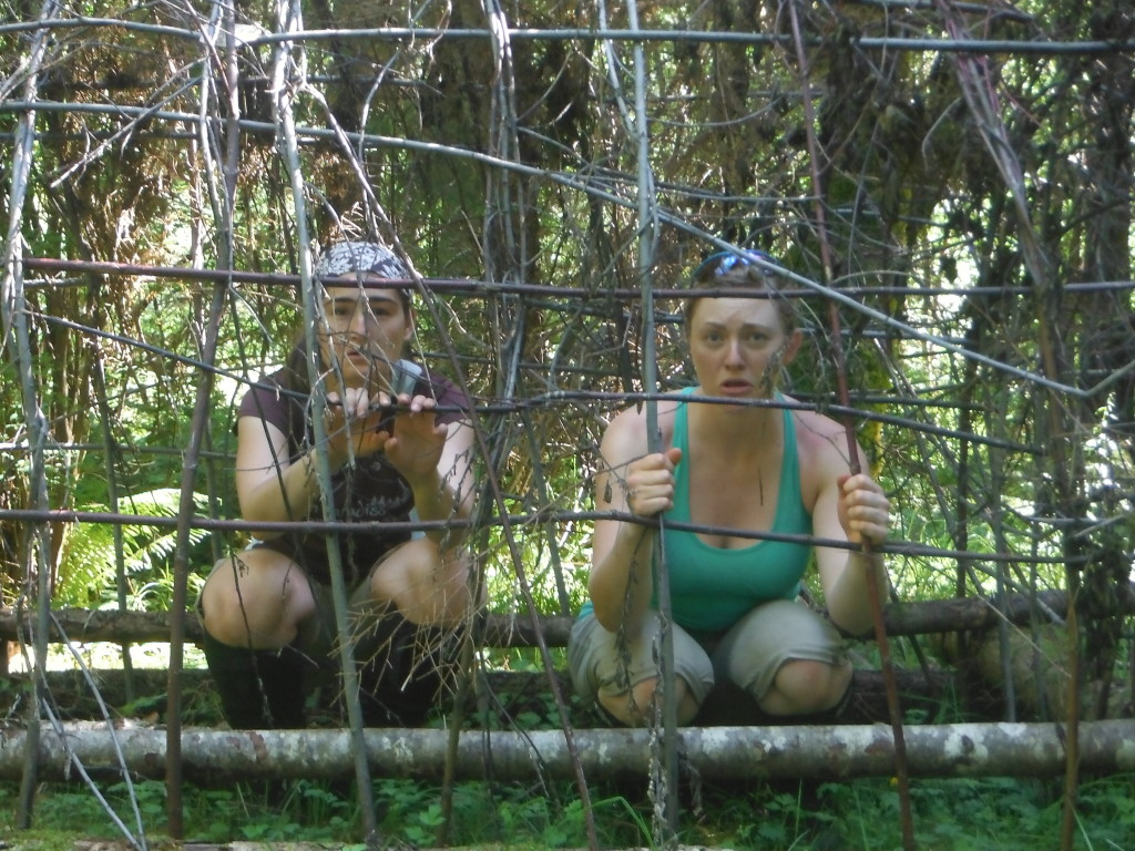 We found a cage!