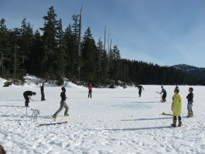 The friendly cricket match