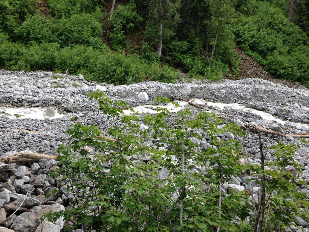 Pika Creek