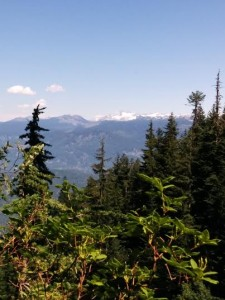 View of Black Tusk and Garibaldi from Trail 02