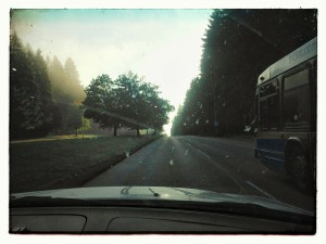 Driving to Deep Cove