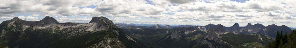 Left to Right: Guanaco, Vicuna, Zupjok, Llama, Alpaca, Anderson River Peaks