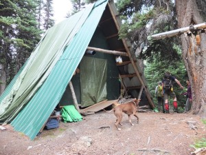 The discovery of yet another cabin