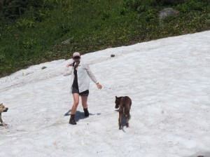 Robin and the dogs enthusiastically engage in a snowball fight at our first snowpatch