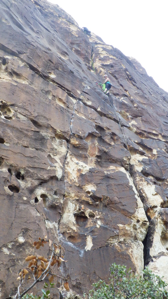 Cora at the top of the first 5.7. pith of Ragged Edges