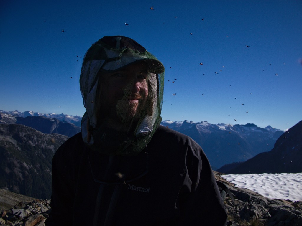 Stuart and insect friends in the alpine on Mt Alfred (Photo: S. Rasmussen)